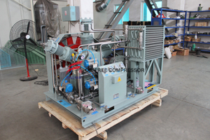 Compresor de gas industrial Laser Air Co2 para cerveza